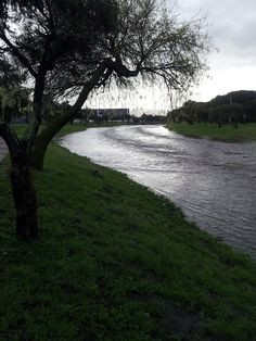 Pinelands Canal flooded - this is the Elsieskraal River that runs through Pinelands in Cape Town on morning of 21 August 2013.