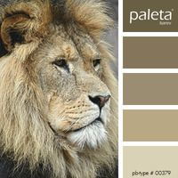 PALETA #00351 - #00400