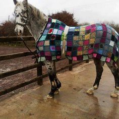 two passions... streetcolor art - crochet horse blanket, photo by Linda Nash .. #inspiration_crochet #diy GB