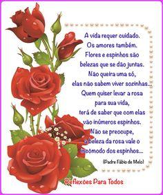 Flores e espinhos... (Padre Fábio de Melo)
