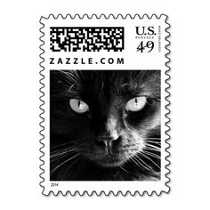Black Cat Face, Eyes, Nose, Whiskers Postage Stamp