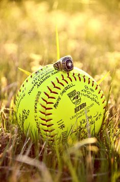 I won't need this for a while, but to nice not to pass along. Senior Photo Session: Softball Copyright Amber S. Wallace Photography (with baseball) Senior Softball, Softball Senior Pictures, Senior Photos Girls, Girls Softball, Senior Boys, Graduation Pictures, Senior Year, Softball Stuff, Grad Pics