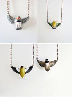 Birds! birds! birds! birds!