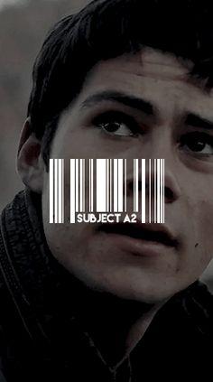 Thomas - Subject A2 gif