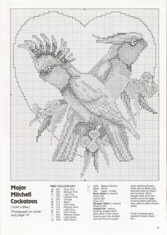 Gallery.ru / Фото #7 - 3 - tymannost Cross Stitch Cushion, Cross Stitch Bird, Cross Stitch Charts, Cross Stitch Designs, Cross Stitching, Cross Stitch Embroidery, Cross Stitch Patterns, Crochet Patterns, Clay Cross