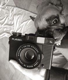 Should we make a pin of this?!?: @punchwall . . . . . . #120mm #35mm#filmgrain#filmcamera#filmisalive#shootfilm#buyfilm#analogphotography#camera#camerazen#cameraporn#kameracraft#mamiya7 #mamiya #plaubel #plaubelmakina67 #120mmfilm #lapelpins#makina #filmphotography#leica #film#shootfilm#filmcameras#pincollectors#plaubelmakina67 #fuckpixels#mediumformatfilm #mediumformat #makina67