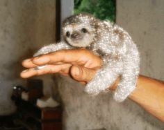 A baby sloth + glitter = ALL YOUR DREAMS ACTUALLY COMING TRUE. | 23 Things Instantly Improved By Glitter