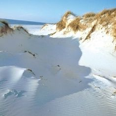 Sand white as snow! St Joseph Peninsula State Park  I have this exact picture on my iPhone. Someone stood in the same place as me....
