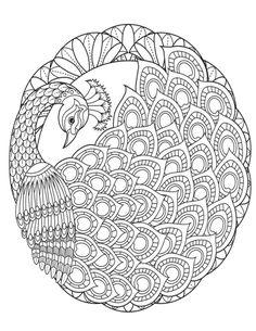 ru / Фото - Coloring Bird Mandalas Adult Coloring Book by Wendy Piersall - tymannost Peacock Coloring Pages, Mandala Coloring Pages, Animal Coloring Pages, Coloring Book Pages, Coloring Sheets, Mandala Art Lesson, Mandala Artwork, Mandala Painting, Mandala Drawing