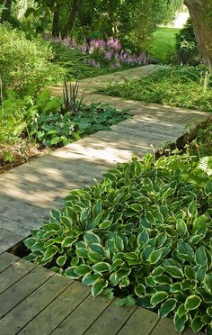 Interesting walkway design through a shade garden.