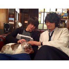 猫と戯れる窪田正孝