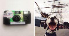 100 caméras ont été remises à des sans-abris de Londres; 80 ont été retournées et environ 2 500 photos ont été développées.