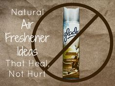 7 DIY Natural Air Freshener Ideas