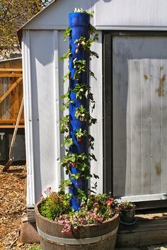 Strawberry Tower is just painted pipe, with holes drilled in it...