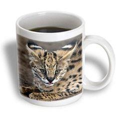 3dRose mug_70989_1 Serval Cat, Kapama Game Reserve, South Africa-Af42 Spi0103 Sergio Pitamitz Ceramic Mug, 11-Ounce >>> Special cat product just for you. See it now! : Cat mug