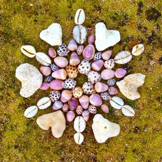 Kathy Klein  i like this.  might like to make a shell/stone and/or natural material and/or flower mandala and hang in frame or on a plaque on the wall or on a tabletop.
