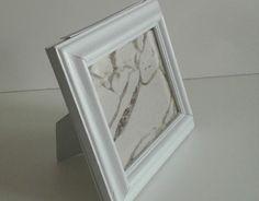 framed ant farms