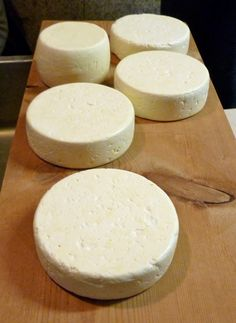 All about making cheese and yogurt.
