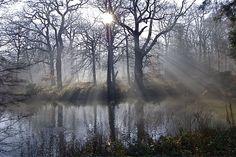 Hampstead Heath. Photo by tonyhall via Flickr.