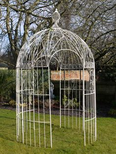 metal ozark trail gazebo 10 x 10 this will make a great outdoor aviary. enclose with hardwire, add a strom door. Place on concrete slab, brick flooring. Put trees, branches, perches, feed bols. toys etc. Take pecautions with insects, cats, and wildlife.