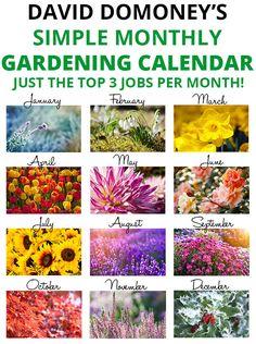 Get on top of your garden with an easy gardening calendar!  3 jobs per month - no more! David Domoney's Simple Monthly Gardening Calendar has just the top 3 jobs per month!
