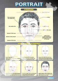 Realistic structure on how to draw/sketch the human head in 6 stages. Includes diagram.
