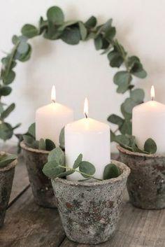 Advent, Adventskranz, Eukalyptus