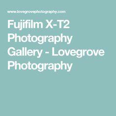 Fujifilm X-T2 Photography Gallery - Lovegrove Photography