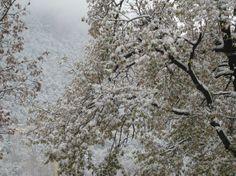 Snow in Santa Coloma Andorra  #winter #snow #santa #coloma #andorra #photography