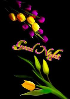 Good Night Images For WhatsApp Free Download New Good Night Images, Romantic Good Night Image, Lovely Good Night, Good Night Flowers, Beautiful Good Night Images, Good Night Gif, Beautiful Nature Pictures, Good Night Moon, Have A Good Night