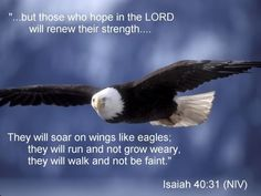 Soaring high on wings like eagles!