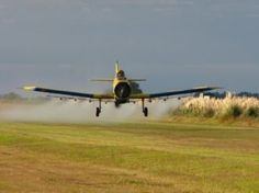 Cancer deaths double in Argentina's GMO agribusiness areas - The Ecologist