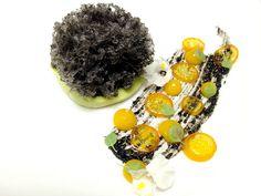 Black Sesame Microwave Sponge Cake, Avocado Mousse, Kumquat!!!!!!!!!!! | Flickr - Photo Sharing!
