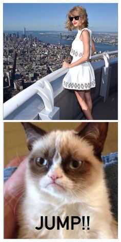 Taylor Swift And Grumpy Cat! by sexyangel  Finals Memes Bitch Please Memes Football Memes Naruto Memes Spongebob Memes Home Featured Recent Top