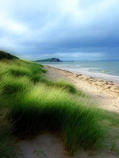 Yellowcraigs Beach, Scotland