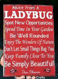 Home Decor - Kitchen Decor- Dining Room - Wood Sign - Advice From Ladybug - Antiqued, Distressed - Entryway, Family Room - Hand Painted