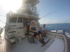Fishing Charters, Bait, Opera House, Safety, Lunch, Drinks, Building, Travel, Security Guard