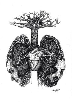 Anatomical Roots