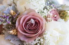 Blush roses. Modern chic. Stunning. AmaZinn Photography. www.AmaZinnPhotography.com Blush Roses, Chic, Flowers, Modern, Plants, Photography, Shabby Chic, Pink Roses, Elegant