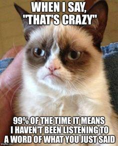 A grumpy Cat Thesaurus.
