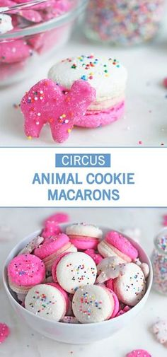 How cute are these Circus Animal Cookie Macarons? Sometimes you just need a fest. - Save Room for Dessert - Köstliche Desserts, Delicious Desserts, Dessert Recipes, Awesome Desserts, Frosting Recipes, Plated Desserts, Healthy Desserts, Baking Recipes, Cookie Recipes
