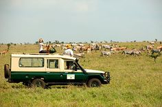 Nairobi Tented Camp is the only safari camp in Nairobi National Park