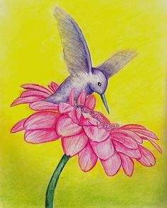 Beija-flor voando sobre flor rosa