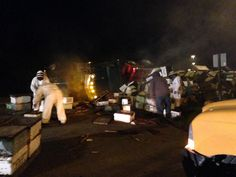 Semi-truck carrying more than 40 million bees overturns on I-5, Washington State Police warns drivers | Q13 FOX News