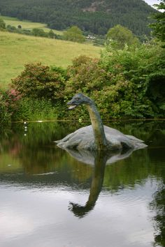 It's the real Loch Ness monster!  We actually did see this statue.  It revolves