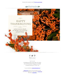 1000 images about thanksgiving emails on pinterest thanksgiving thanksgiving sale and happy. Black Bedroom Furniture Sets. Home Design Ideas
