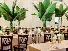 tropical inspired reception - photo by Ashley Slater Photography http://ruffledblog.com/hollywood-glam-wedding-with-an-unexpected-tropical-twist