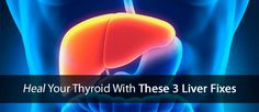 Discover how to heal your thyroid using these three simple fixes for your liver...