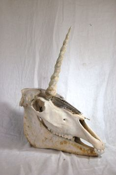 If I was rich....  Unicorn Skull with Silverplate Chamfron by shesoffherrocker, $600.00