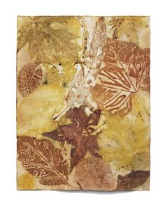 Leaf Monoprint Process 2 – Materials « Cassandra Tondro |  Green Art Blog Arches watercolor paper - layer leaves and paper in a bundle and steam for 2 hours in a roasting pan